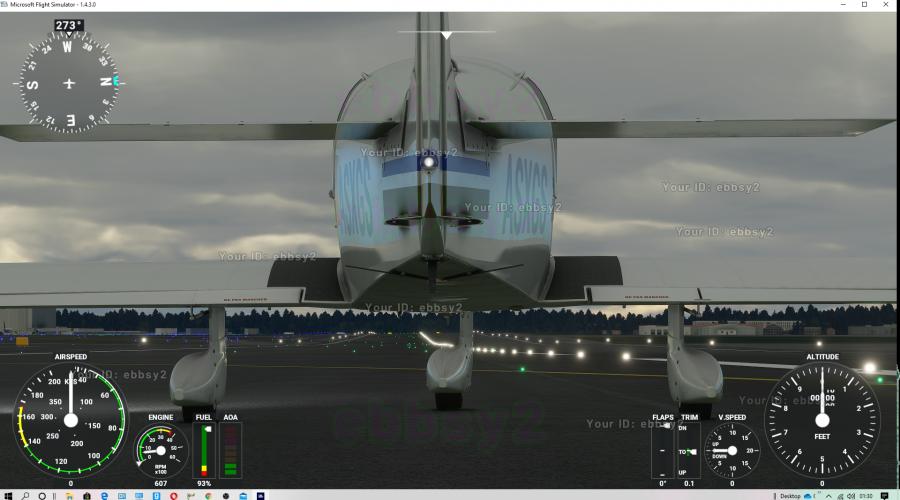 Screenshot by Ebbsy2